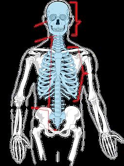 Trattamento medico: Osteopatia